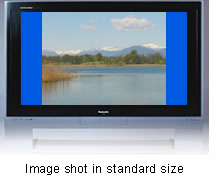 Image shot in standard size