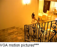 VGA motion pictures ***.