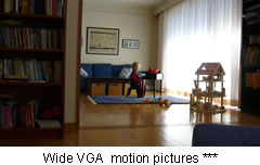 Wide VGA  motion pictures ***