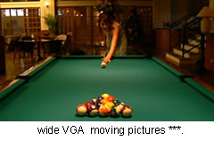 wide VGA moving pictures ***.