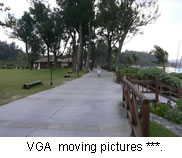 VGA moving pictures***