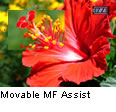 Movable MF Assist