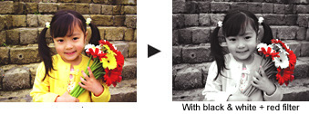 Easy Image Editing for Artistic Visual Expressions