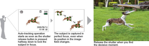 Auto-Tracking AF for Constant Focus on an Active Subject