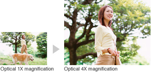 Sample images: Optical 1X magnification and Optical 4X magnification